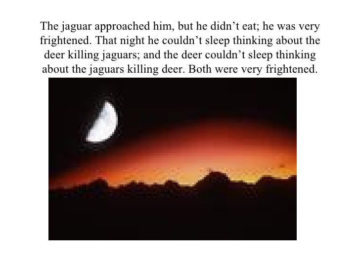 The jaguar approached him, but he didn't eat; he was very frightened. That night he couldn't sleep thinking about the deer...