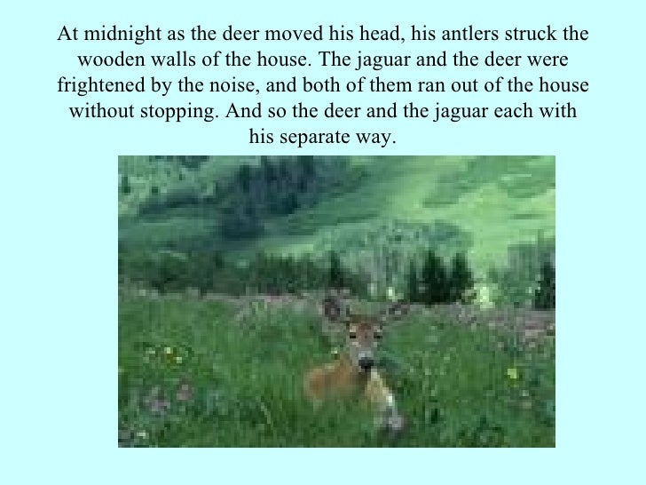 At midnight as the deer moved his head, his antlers struck the wooden walls of the house. The jaguar and the deer were fri...