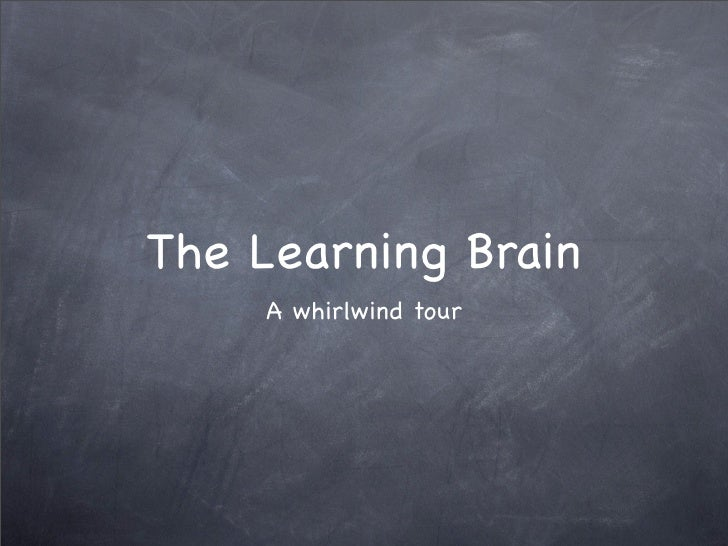 The Learning Brain     A whirlwind tour