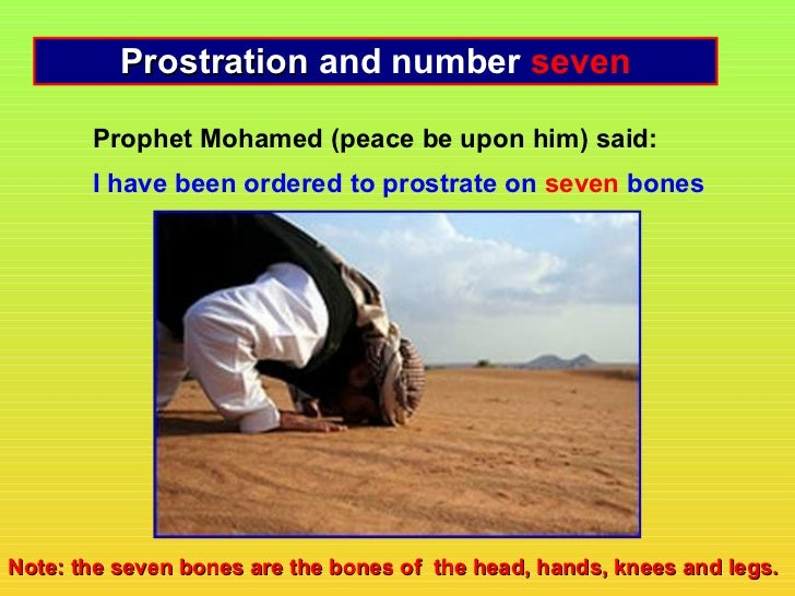 Prostration and number seven       Prophet Mohamed (peace be upon him) said:       I have been ordered to prostrate on sev...