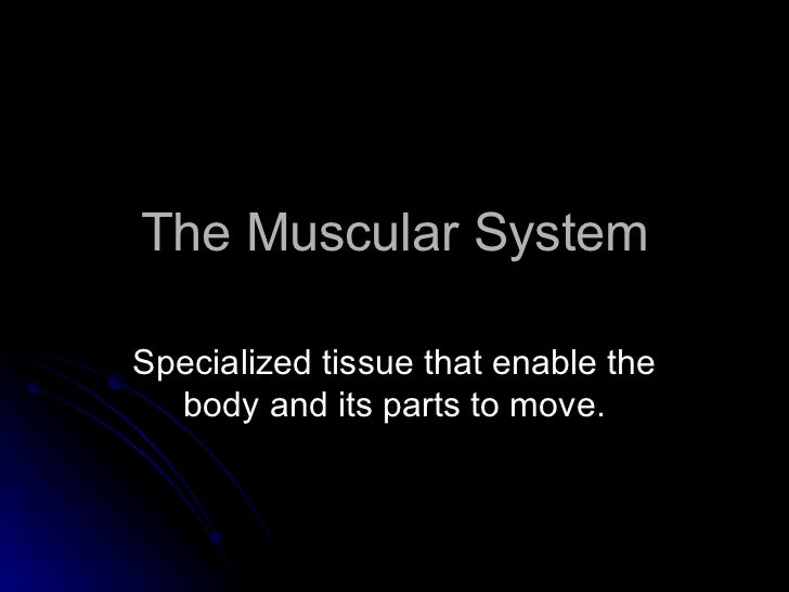 the muscular system powerpoint, Muscles