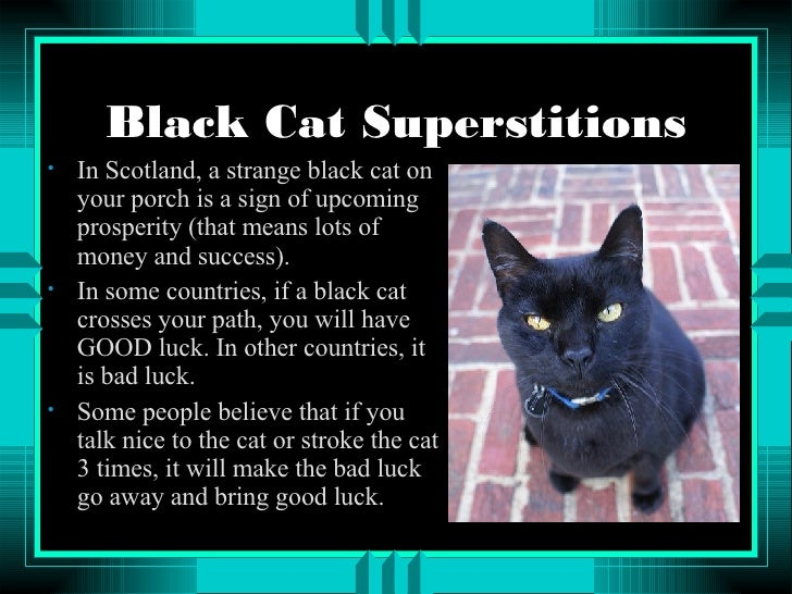 superstitions good luck Common superstitions csi is not responsible for the content of this advertisement friday the thirteenth is an unlucky day a rabbit's foot brings good luck.