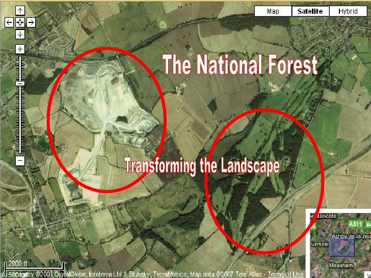 The National Forest Transforming the Landscape