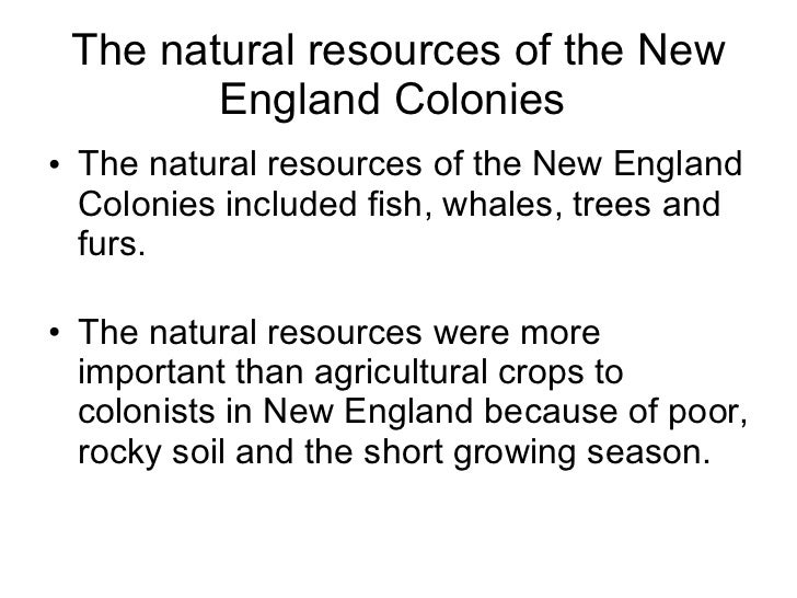 new england colonies facts - Khafre