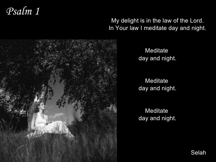 Psalm 1 My delight is in the law of the Lord. In Your law I meditate day and night. I shall be like a tree Planted by the ...