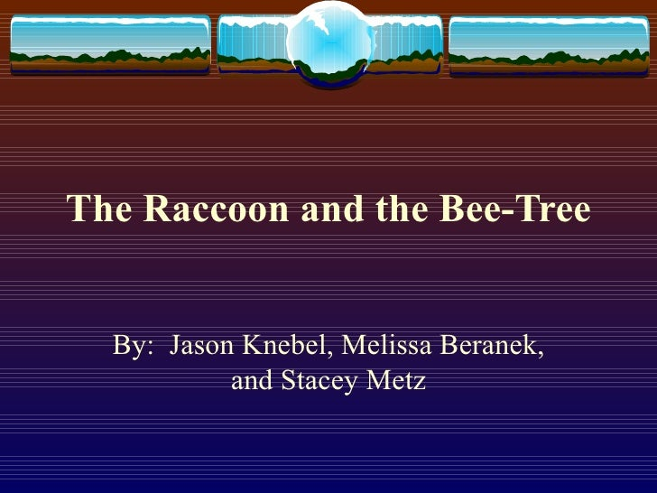 The Raccoon and the Bee-Tree By:  Jason Knebel, Melissa Beranek, and Stacey Metz