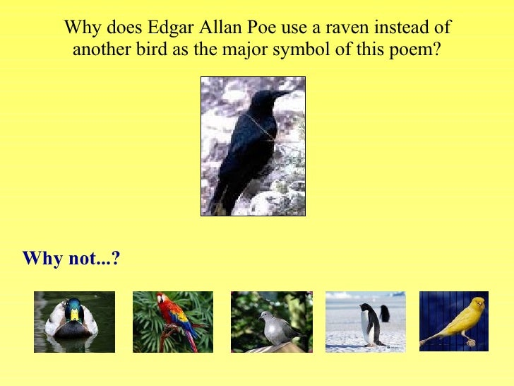 how does poe create tension in the poem the raven Edgar allen poe is known for writing suspenseful stories with a dark theme  2  what is the figurative language in the poem acquainted with the night   the first-person narration is one of the strongest tools for creating suspense in  the.