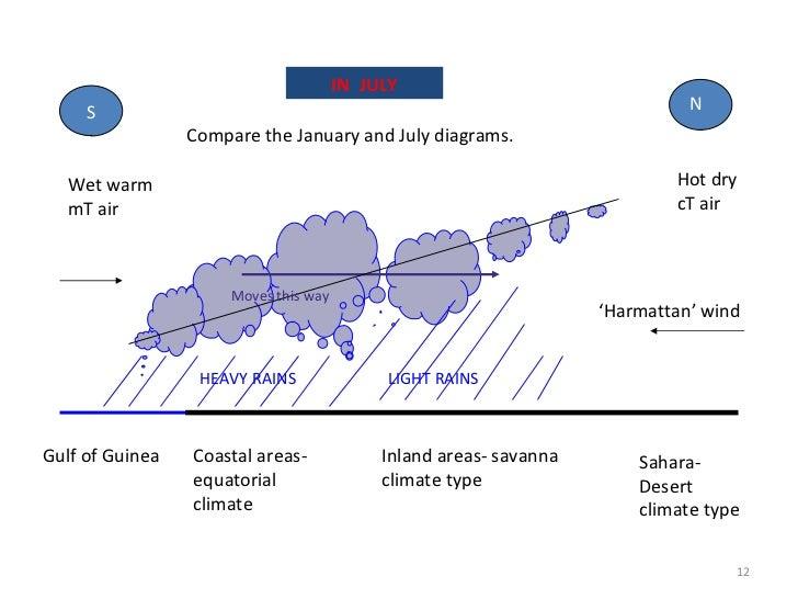 Room 42 - Savanna Climate