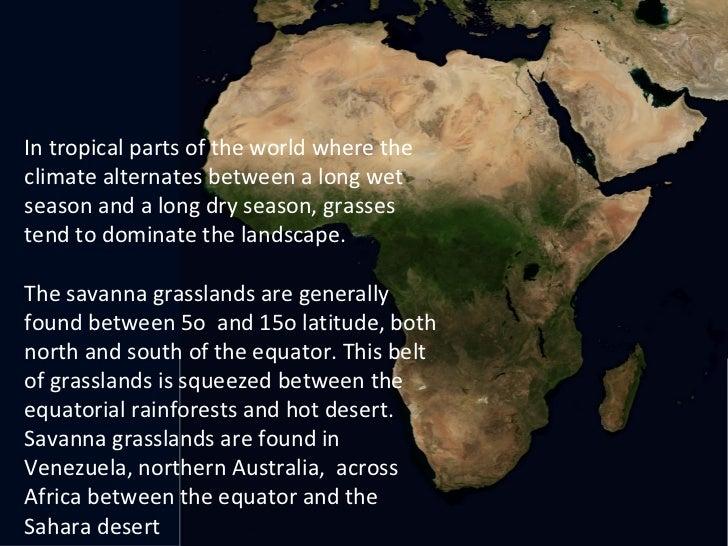 Savanna Biome World Map.The Savanna Ecosystem