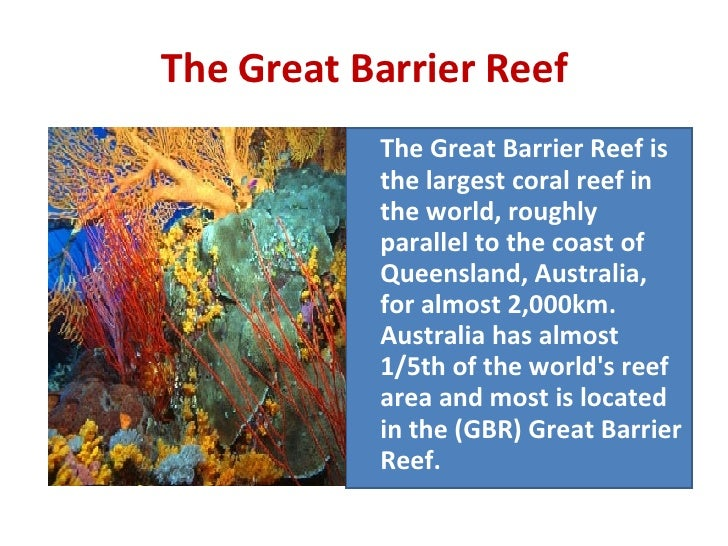 The Great Barrier Reef <ul><li>The Great Barrier Reef is the largest coral reef in the world, roughly parallel to the coas...