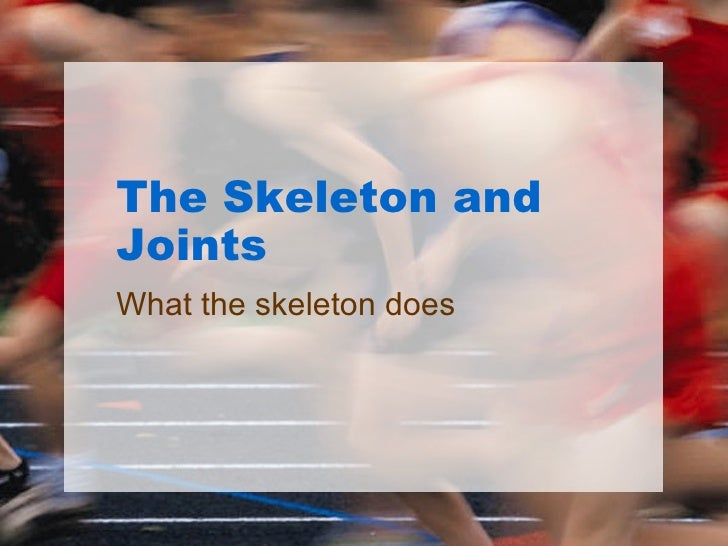 The Skeleton and Joints What the skeleton does
