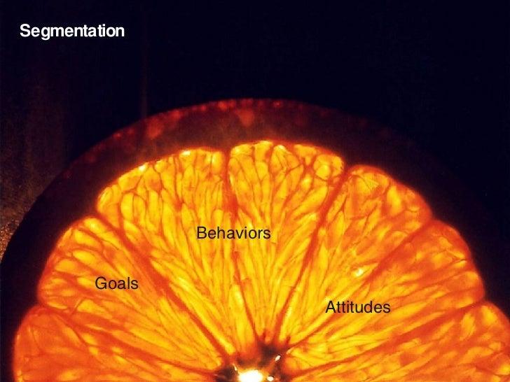 Segmentation Goals Behaviors Attitudes