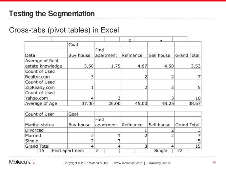 Testing the Segmentation <ul><li>Cross-tabs (pivot tables) in Excel </li></ul>
