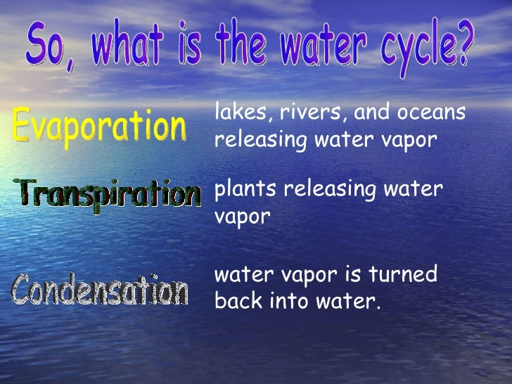 9 So What Is The Water Cycle