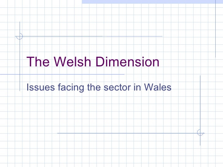 The Welsh Dimension Issues facing the sector in Wales