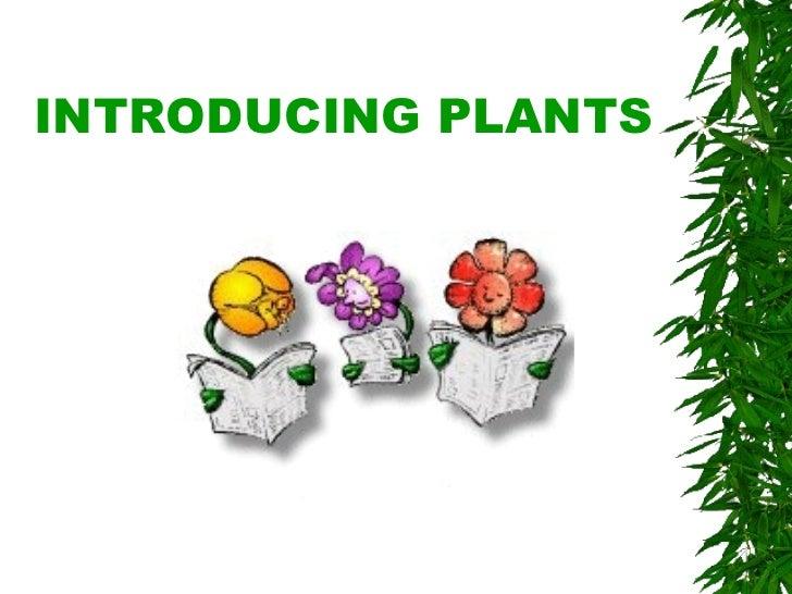 INTRODUCING PLANTS