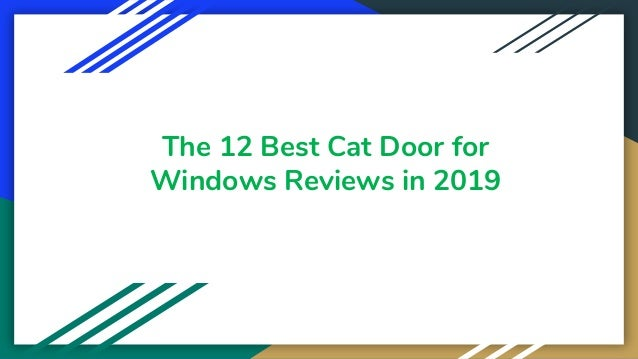 The 12 Best Cat Door for Windows Reviews in 2019
