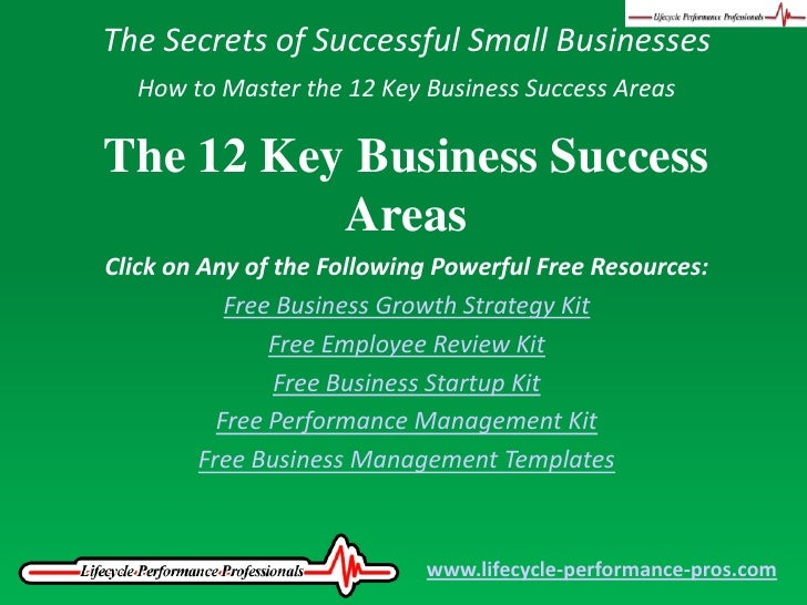 The Secrets of Successful Small Businesses<br />How to Master the 12 Key Business Success Areas<br />The 12 Key Business S...