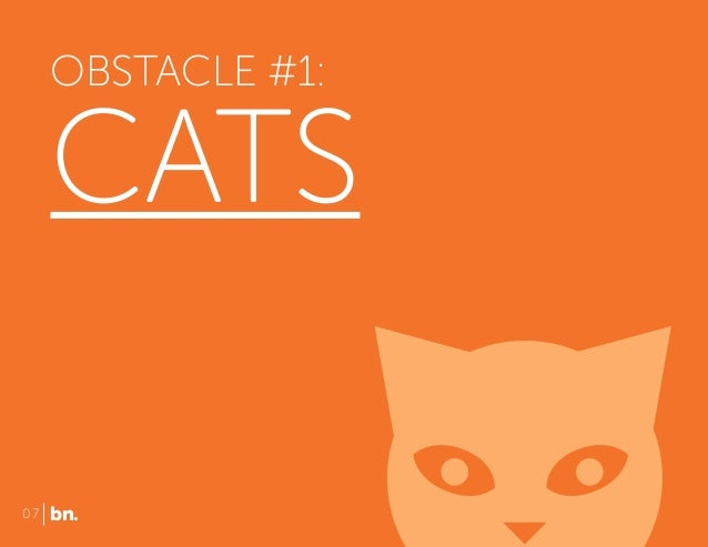 OBSTACLE #1:  CATS 07  bn.