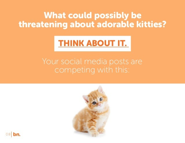 What could possibly be threatening about adorable kitties? THINK ABOUT IT. Your social media posts are competing with this...