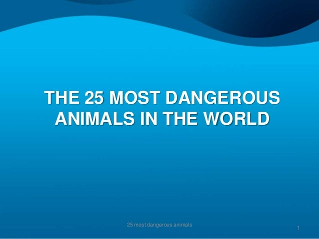 THE 25 MOST DANGEROUS ANIMALS IN THE WORLD       25 most dangerous animals                                   1