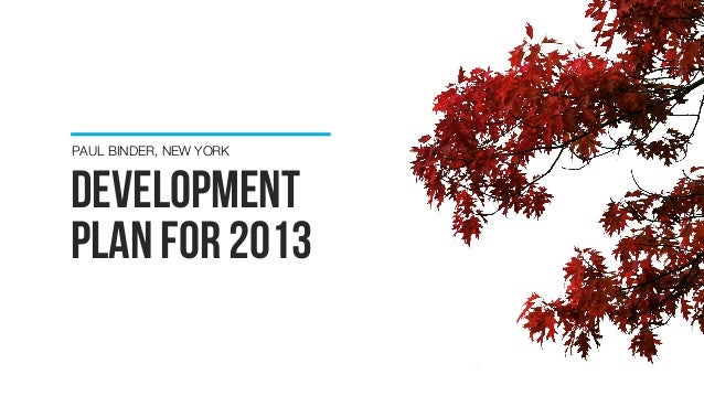 development plan FOR 2013 PAUL BINDER, NEW YORK