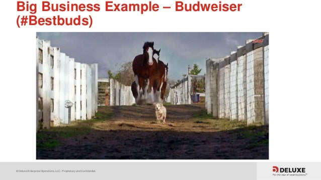© Deluxe Enterprise Operations, LLC. Proprietary and Confidential. Big Business Example – Budweiser (#Bestbuds)