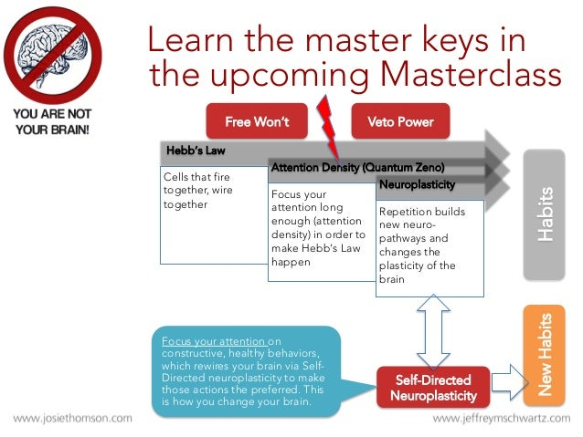 Meta- Awareness Meta- Cognition 4 STEPS Meta- Attention Meta Layers of the 4 Steps
