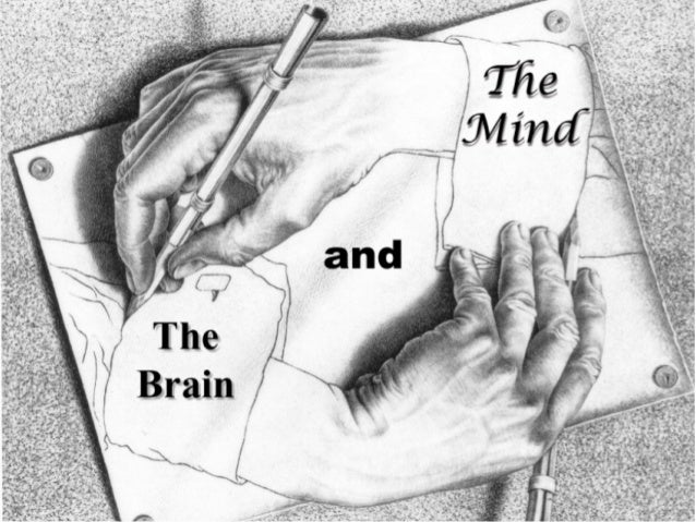 The brain puts out the call. The mind decides whether to listen. Brain vs Mind