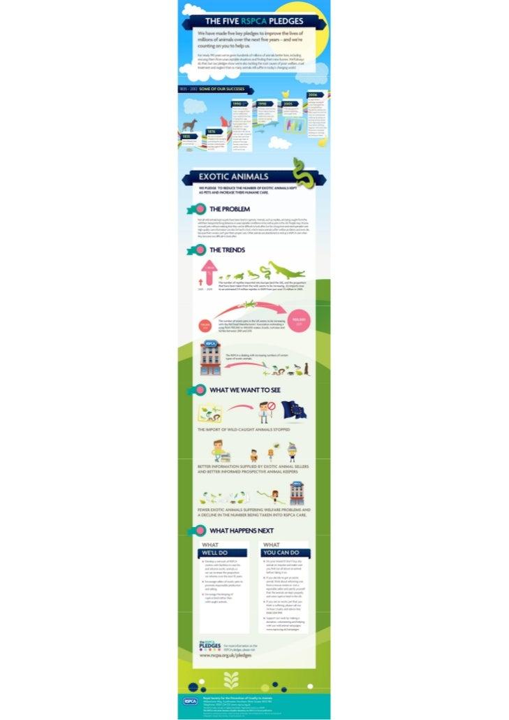 RSPCA -  5 pledges: Exotic Animals