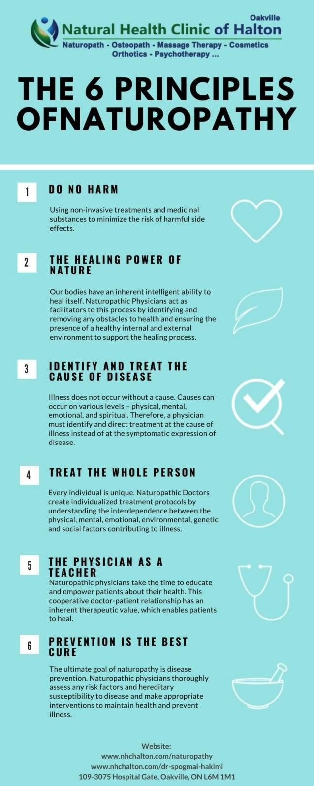 The 6 Principles of Naturopathy