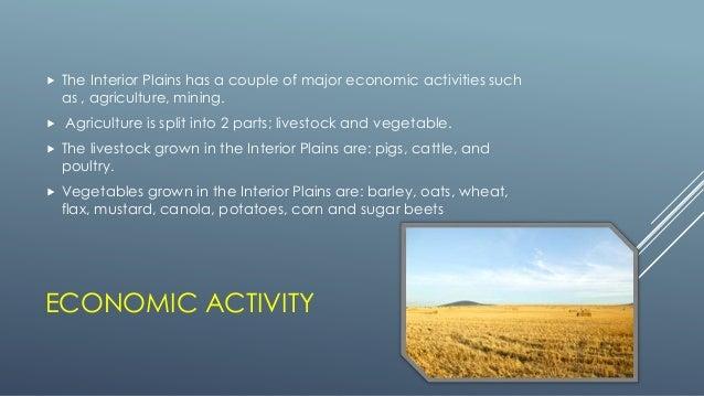 VEGETATION; 24.   The Interior Plains Has ...