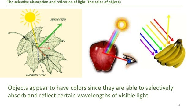 The absorption and the selective refraction of light the ...