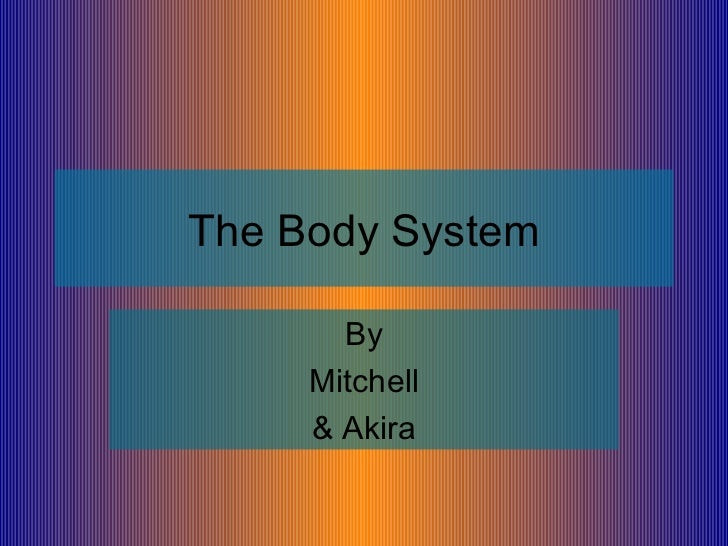 The actual body system 2.0