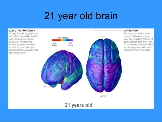 When does the brain fully mature
