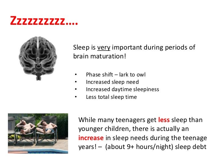 For Teenage Brains Importance Of >> The Adolescent Brain Some Implication For Educators C