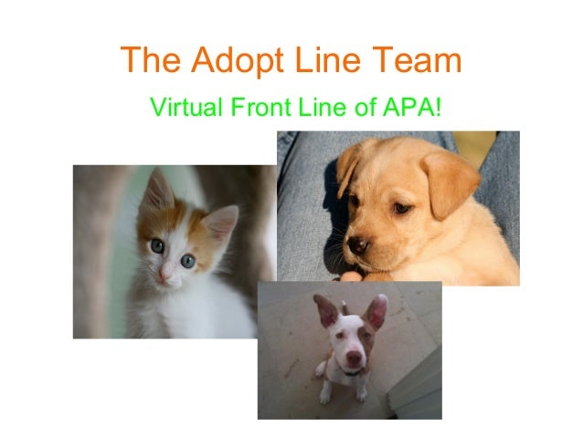The Adopt Line Team Virtual Front Line of APA!
