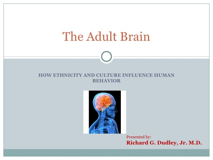 HOW ETHNICITY AND CULTURE INFLUENCE HUMAN BEHAVIOR The Adult Brain Presented by: Richard G. Dudley, Jr. M.D.