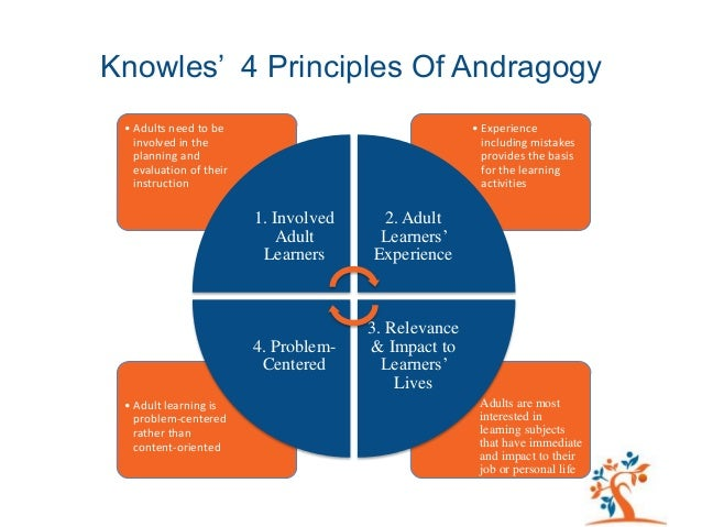 impact of cognitive theories on the field of andragogy Learning satisfaction of knowles' andragogical theory questionnaire ( pelskatq) on  delimit a field of adult education and training    is   cognition level.