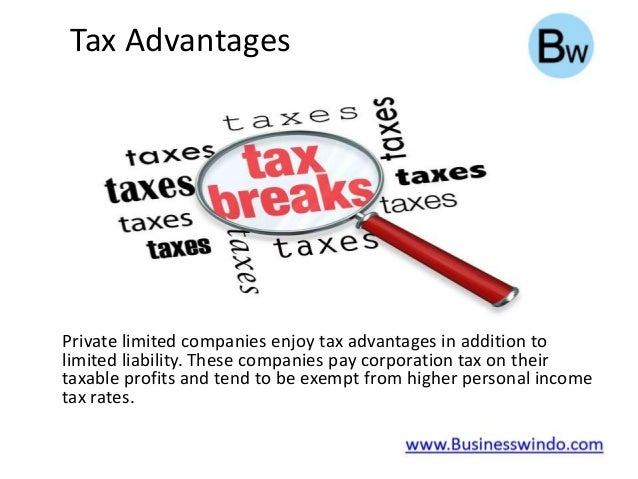 advantages of private limited company pdf
