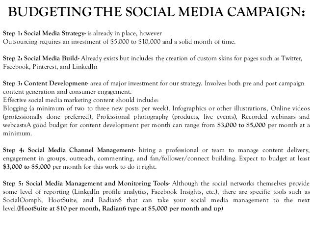 BUDGETINGTHE SOCIAL MEDIA CAMPAIGN: Step 1: Social Media Strategy- is already in place, however Outsourcing requires an in...