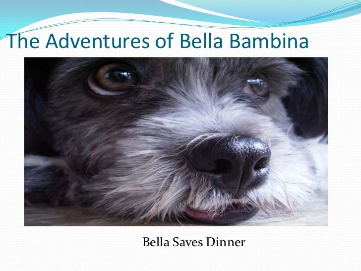 The Adventures of Bella Bambina<br />                                     Bella Saves Dinner<br />