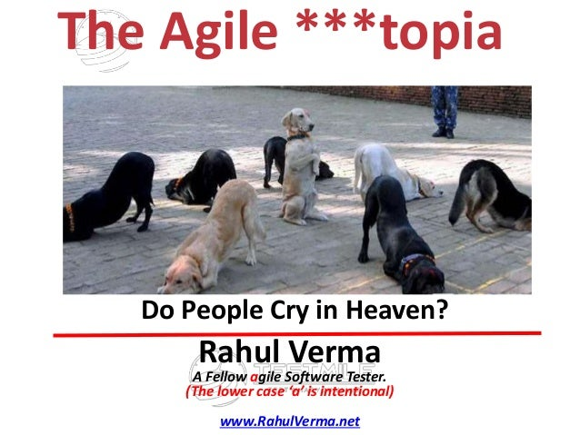 TMRahul Verma A Fellow agile Software Tester. (The lower case 'a' is intentional) www.RahulVerma.net Do People Cry in Heav...