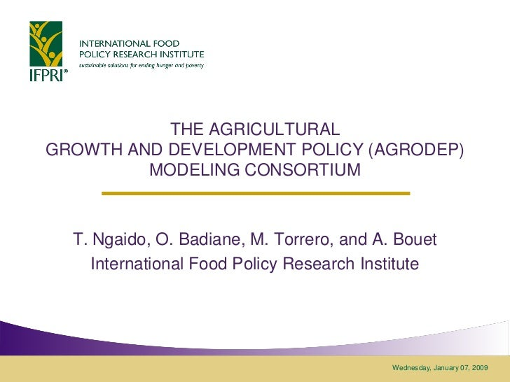 THE AGRICULTURALGROWTH AND DEVELOPMENT POLICY (AGRODEP)         MODELING CONSORTIUM  T. Ngaido, O. Badiane, M. Torrero, an...