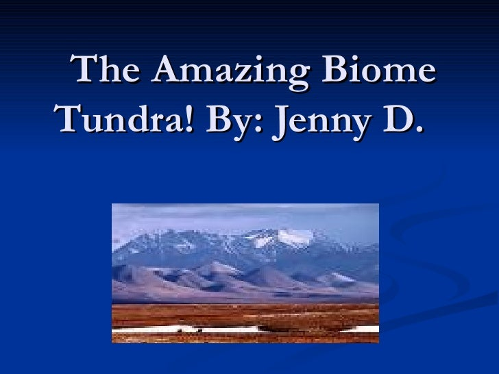 The Amazing Biome Tundra! By: Jenny D.