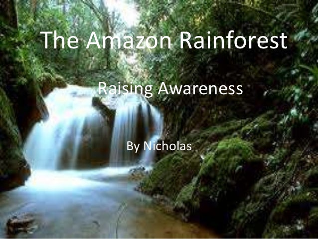 The Amazon Rainforest    Raising Awareness       By Nicholas