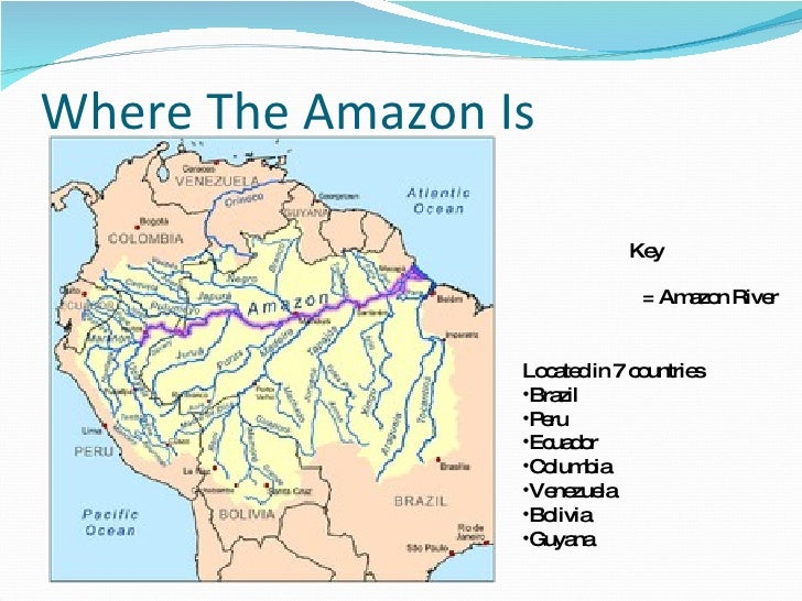 The amazon river by steven green 97 2003 powerpoint geographical location 3 where the amazon gumiabroncs Images