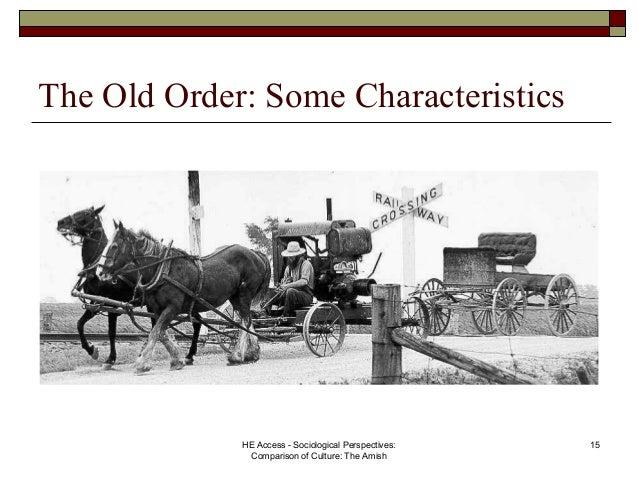 Religion/ Chasidim And Old Order Amish: A Comparison term paper 17843