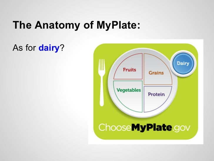 The Anatomy Of Myplate