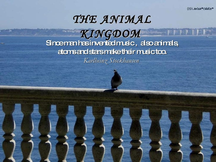 Since man has invented music ,  also animals, atoms and stars make their music too. Karlheinz Stockhausen  THE ANIMAL KING...